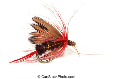 Fishing Fly - Close-up of a colorful fishing fly on a white...
