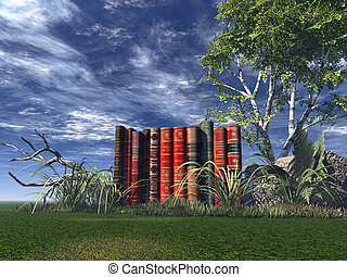 literature - old books on a green field