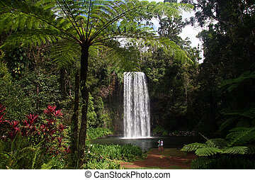 Waterfall in Queensland (Australia)