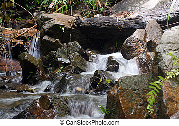 cascade waterfall in the wild tropical forest