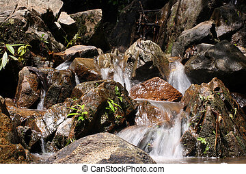 cascade water in the wild tropical forest