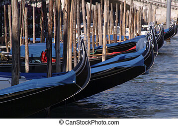 Gondole in Venice - Lines of gondole tied up in Venice