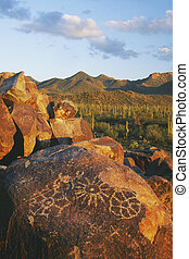 Signal Hill in Saguaro National Park - Petroglyphs on Signal...