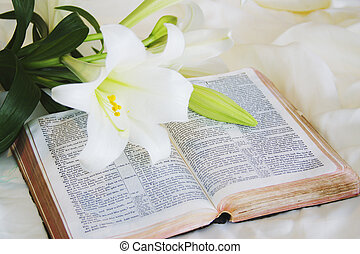 Páscoa, lírio, bíblia