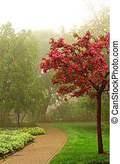 Foggy park - Path in a green foggy park in the spring with...