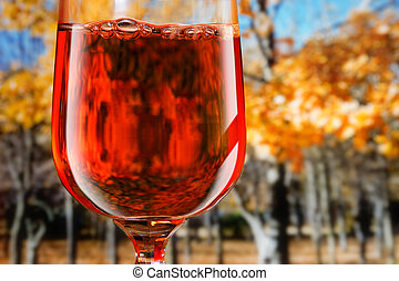 RedWine - Red wine in a glass