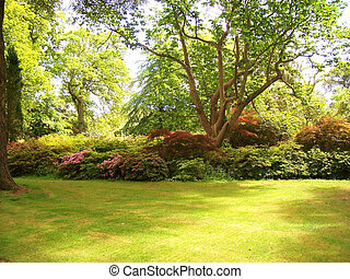 Garden - garden on display at Exbury Gardens UK