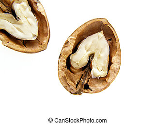 walnut shell and nut - Close-up of divided walnut shell on...