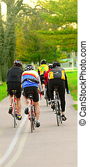 Bicyclist - Group of bicyclist riding in a summer park