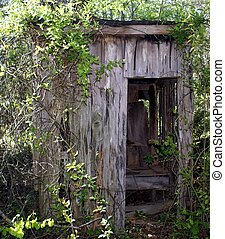 Time from the past - An old outhouse sits in the woods in...