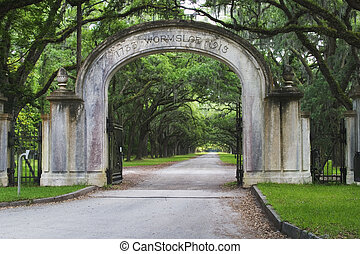 estado, histórico,  wormsloe, local