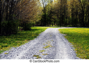 The Road Less Traveled - Gravel road winds through the...