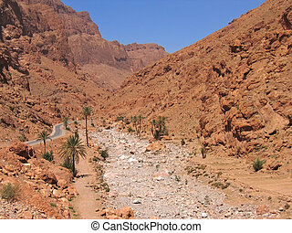 Dry moroccan mountains with some rare palm tree, Todra...