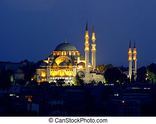 Sultans mosque - Old Turkish Sultan mosque at night lights