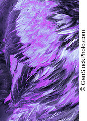 Abstract Lilac Feathers - Abstract of the feathers in shades...
