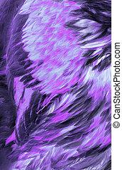 Extracto, lila, plumas