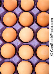 brown eggs in carton close up shot