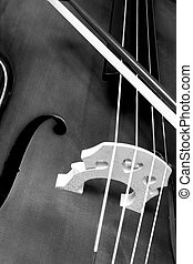 Cello And Bow - Closed-up shot of a cello and its bow.