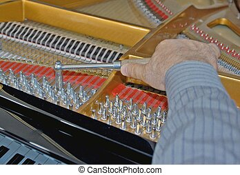 tuning piano strings - piano tuner ajusting piano strings...