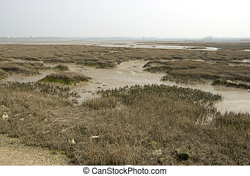Estuary scene on the river medway in kent