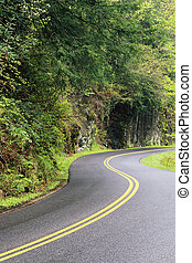 Winding Road - Asphalt road winding through the forest,...