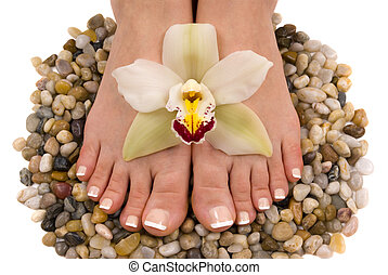 Feet and Orchid