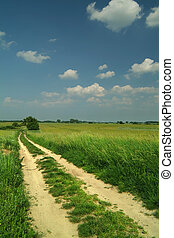 path through wheat fields