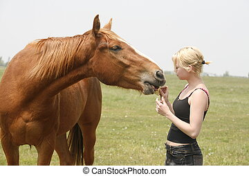 feeding the horse - angel feeding horse some apple