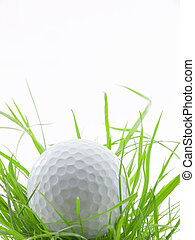 In the ruff - Golf ball in tall grass or ruff, isolated on...