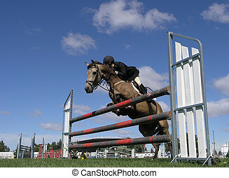 The Dun Jumper - A show jumper clearing a jump Taken at the...