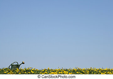 Watering-can in a flowering spring field - Green...