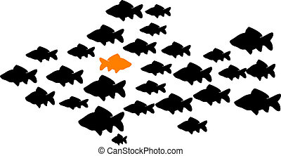 fish school - school of fish with one orange fish swimming...
