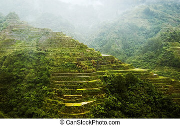 Banaue Rice Terraces - Afternoon rain in Banaue Rice...