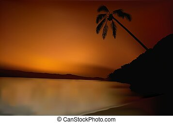Tropical sunset 1