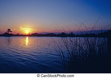 Sunset over Sisal Pond, Everglades National Park, Florida