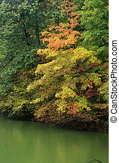 Brown County - Autumn foliage on Ogle Lake, Brown County...