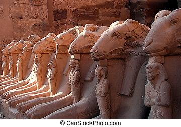 egypten, 6