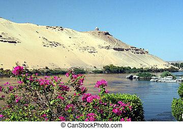 Egypt 9 - Egypt