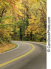 Autumn Colors - Road leading through autumn colors