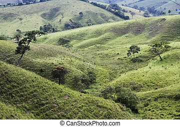 Brazil - Farm land the country side in the state of Minus in...