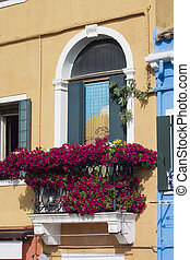 Burano Venice Italy - Colorfull homes that line the canals...