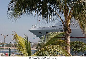 Ship at Tropical Port