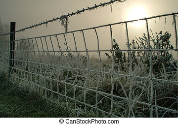 Fence covered in Frost - a fence cover in frost on a cold...
