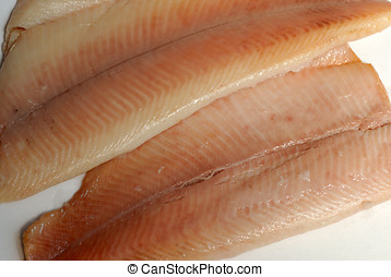 Fillet of trout - Close over view of smoked trout fillet