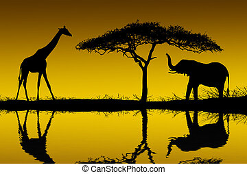 Sunrise - Elephants and giraffes reflected in the early...