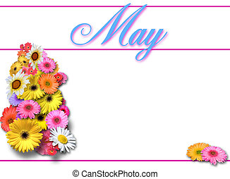 May Day on White - Spring flowers on white background for...
