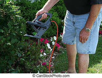 Man trimming bush - Man in his garden,trimming a bush