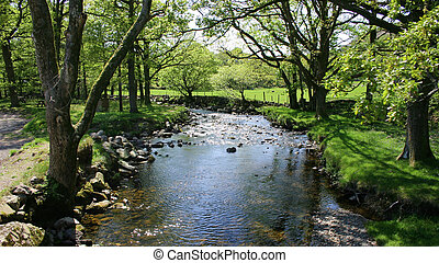 river scene - sunlight and shadows on the tree lined river