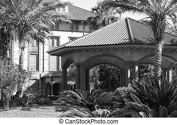 gazebo amidst palm trees - lovely black and white photo of...