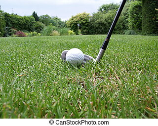 Golf course - a golf ball and a golf club